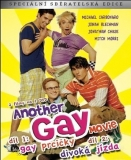 DVD: Another Gay Movie (I+II)